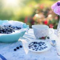 Scrivere le calorie sul menù? Potrebbe favorire scelte più salutari