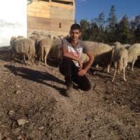 """La favola di Elia, pastore a 17 anni: """"Grazie ai sardi, ho di nuovo il mio gregge"""""""