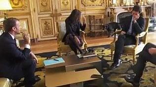 Nemo imbarazza Macron:il cane fa pipì durante la riunione