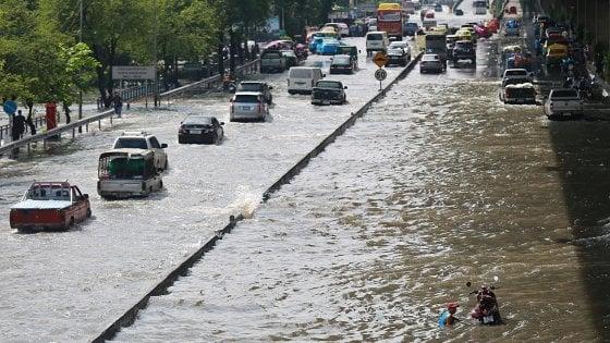 """Dall'Amazzonia al Congo, scatta l'allarme: """"Siccità e inondazioni uccidono i fiumi"""""""