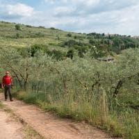 Il Cammino di San Francesco per immagini