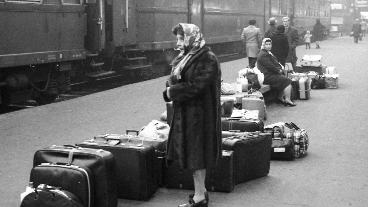 Immigrazione tra cinquant 39 anni un terzo della for Numero dei parlamentari italiani
