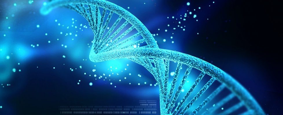 """Ingegneria genetica, arriva la """"matita rossa"""" per correggere il Dna"""
