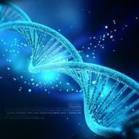 Ingegneria genetica, arriva la