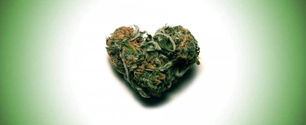 """""""Chi fuma marijuana fa il 20% di sesso in più"""""""