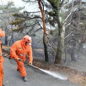 """""""Fermate la caccia"""". L'appello degli animalisti dopo il record di incendi"""