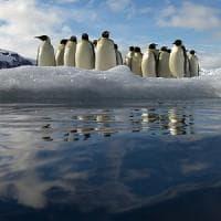 L'Antartide cambia forma anche per effetto del vento