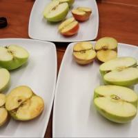 Usa, arriva sugli scaffali la mela 'artica'.