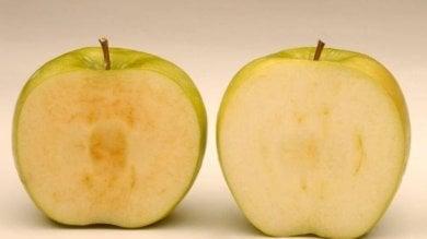 """Usa, arriva sugli scaffali la mela 'artica'. """"Venduta già a fette non diventa mai scura"""""""