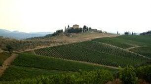 Un resort tra le vigne del Chianti