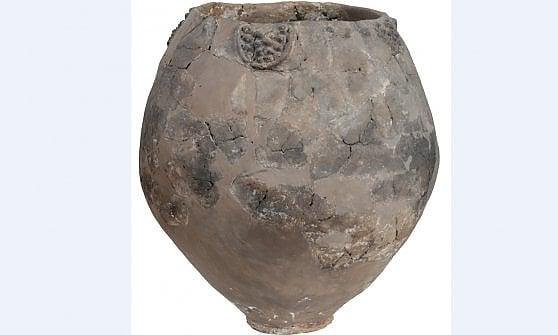 Scoperto il vino più antico del mondo