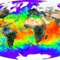 Clima, per il Wwf il 2017 è stato l'anno orribile per il pianeta
