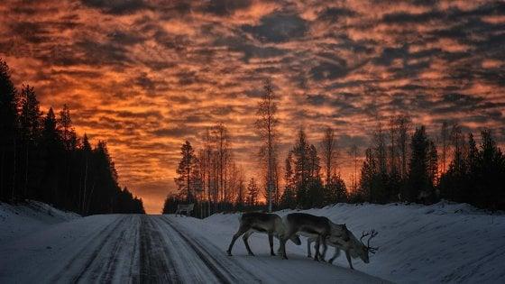 Il Natale è ancora più bello nella Svezia di Santa Claus