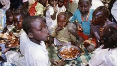 Africa, aumenta nella fascia Sub-sahariana  il numero di persone  che soffre di sotto nutrizione cronica
