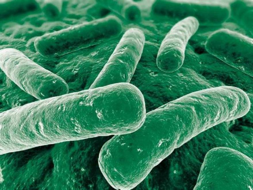 Bambini, il decalogo per usare correttamente gli antibiotici