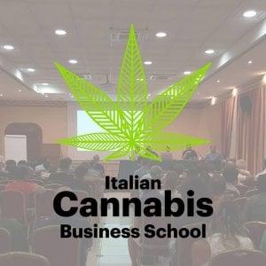 A scuola di cannabis: ora come coltivarla lo insegnano i prof