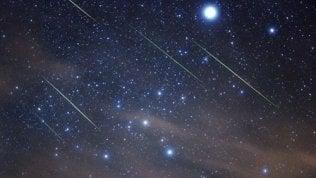 Leonidi, le stelle cadentiilluminano il weekend · foto