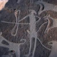 Scoperte in Arabia le prime raffigurazioni di cani addomesticati