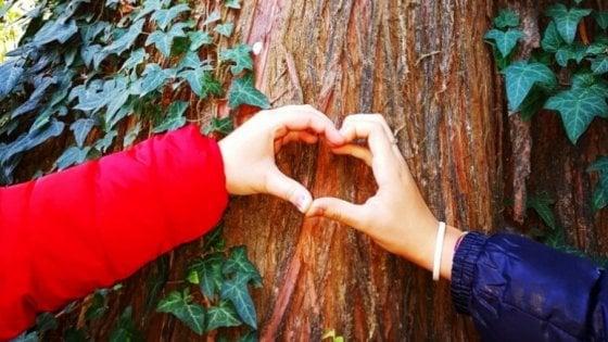 Per fare un albero ci vuole un hashtag: #unalberoè, ogni 50 post uno da piantumare nelle aree incendiate