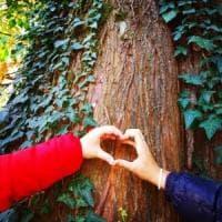 Per fare un albero ci vuole un hashtag: #unalberoè, ogni 50 post uno da piantumare nelle...