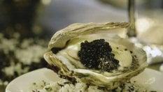 Il caviale parla italiano (e cinese) tutti i segreti del cibo degli zar