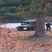 """Corea del Nord, spari contro disertore nella zona demilitarizzata. Usa: """"Violato..."""
