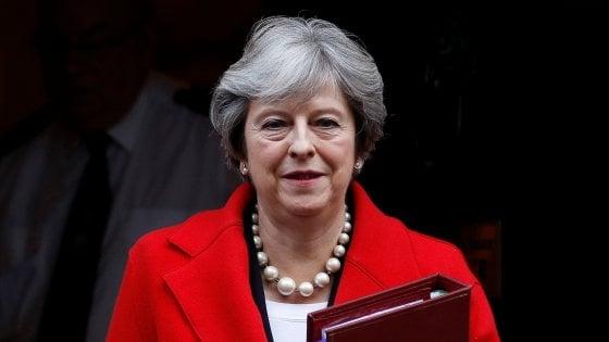 """Parlamento britannico: animali incapaci di provare """"dolore o emozioni"""""""