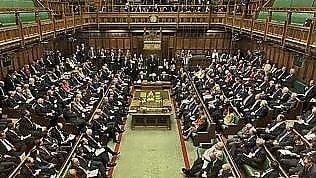 """Parlamento vota: animali incapaci di provare """"dolore o emozioni"""""""