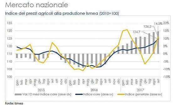 Terzo trimestre in crescita per l'agroalimentare
