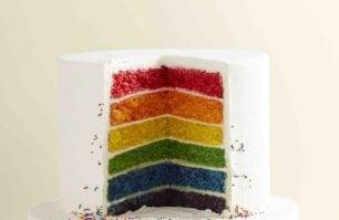La torta arcobaleno  che divide l'America