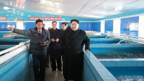 """Nord Corea, nuovo test balistico. Giappone """"Missile vicino nostre acque"""". Trump: """"Ce ne occuperemo"""""""
