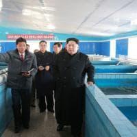 Nord Corea, nuovo test balistico. Giappone