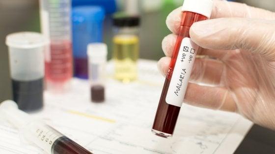 Malaria,  un passo avanti per metterla ko. Altri 21 paesi verso l'eliminazione