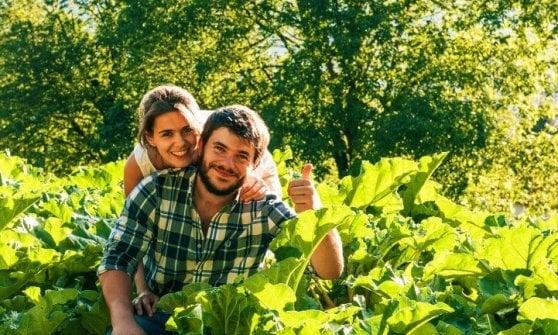 Il rabarbaro che parla italiano: una storia d'amore e passione per la terra