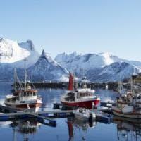 Accordo tra Ue e partner sui limiti alla pesca nell'Artico