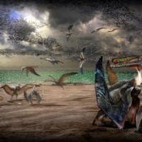 Cina, trovate duecento uova di pterosauro