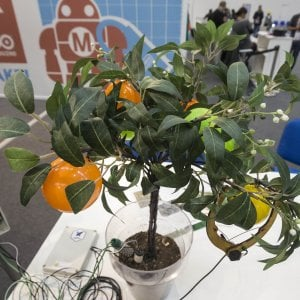 Maker Faire, dall'orto 2.0 alla pentola robot: la top five da non perdere
