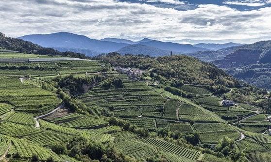 L'eleganza delle bollicine di montagna: ecco gli spumanti del Trentino Alto Adige