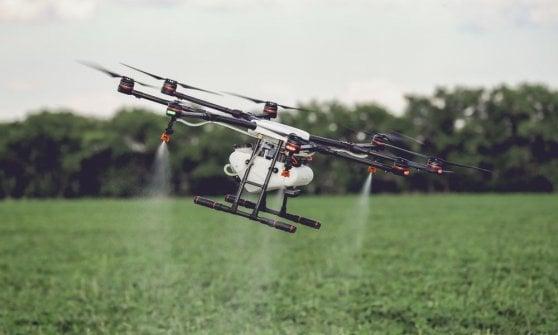 Big data, droni e IoT: la seconda vita dell'agroalimentare