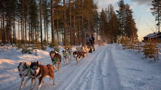 Nella Lapponia svedese si incontra Santa Claus