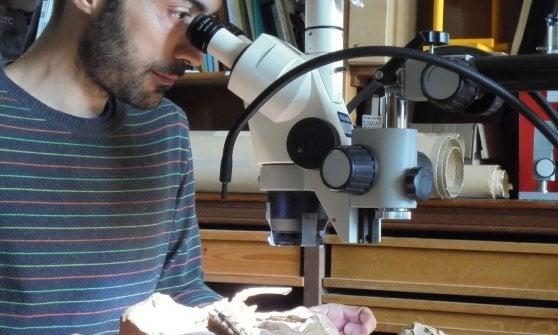 A metà tra papera e dinosauro: scoperta nuova specie in Mongolia