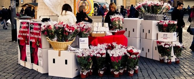 Ail, stelle di Natale in 4800 piazze italiane