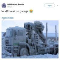 ''Gelicidio, ma cos'è?'', ironia su Twitter