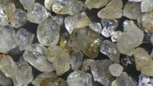 In un granello di sabbia è nascosta una metropoli di batteri