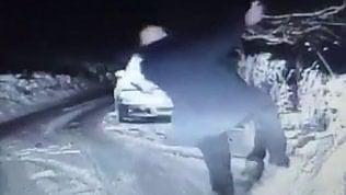 Il poliziotto scivola sul ghiaccio: la caduta è come nelle comiche