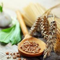 Pastai e agricoltori, protocollo per tutelare il grano italiano