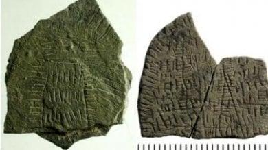 """Danimarca: il mistero delle 300 rocce. """"Incise nell'età della pietra"""""""