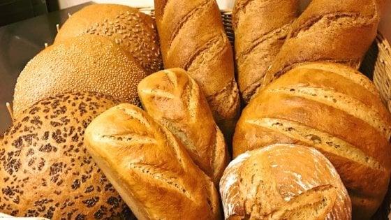 162556981-6855960d-f88d-4951-8227-a0fb38ee95ec Val di Non, una filiera tra le nevi: dal grano al pane