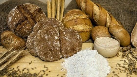 Val di Non, una filiera tra le nevi: dal grano al pane