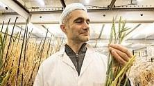 Piante coltivate più velocemente per la fame nel mondo  di M. L. PRETE